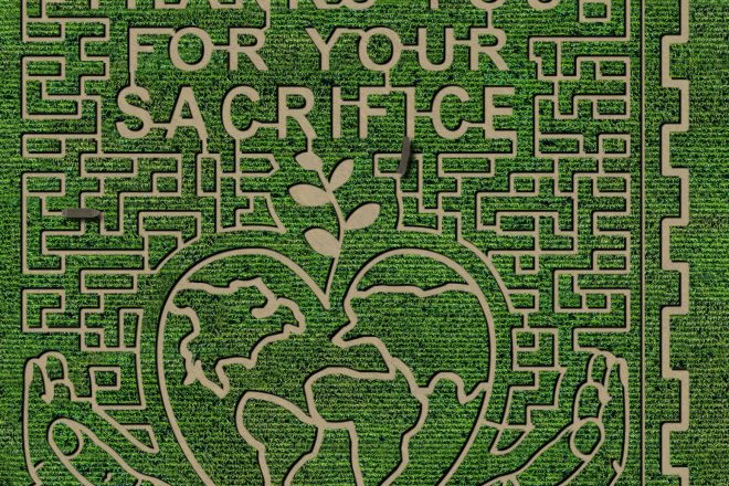 Colorado Farm is Saying Thank You with Corn Maze